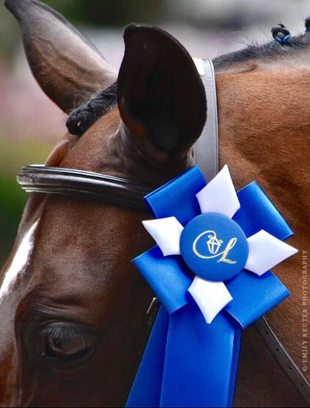 Image result for blue ribbon eventing