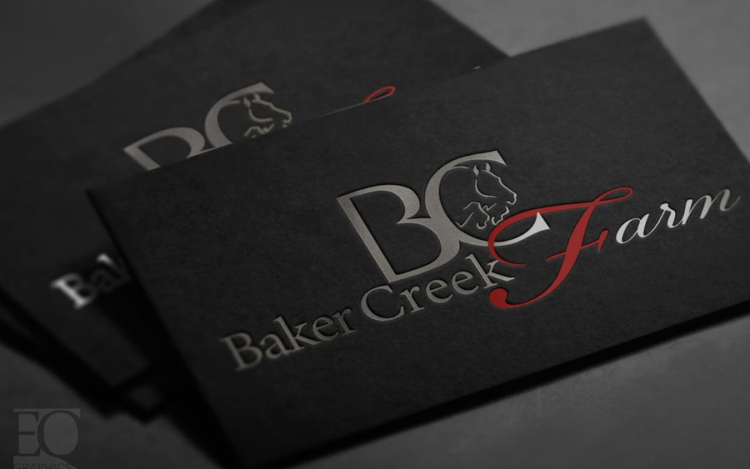 Baker Creek Farm Cleveland Ohio Horseback Riding Lesson Facility Logo by EQ Graphics
