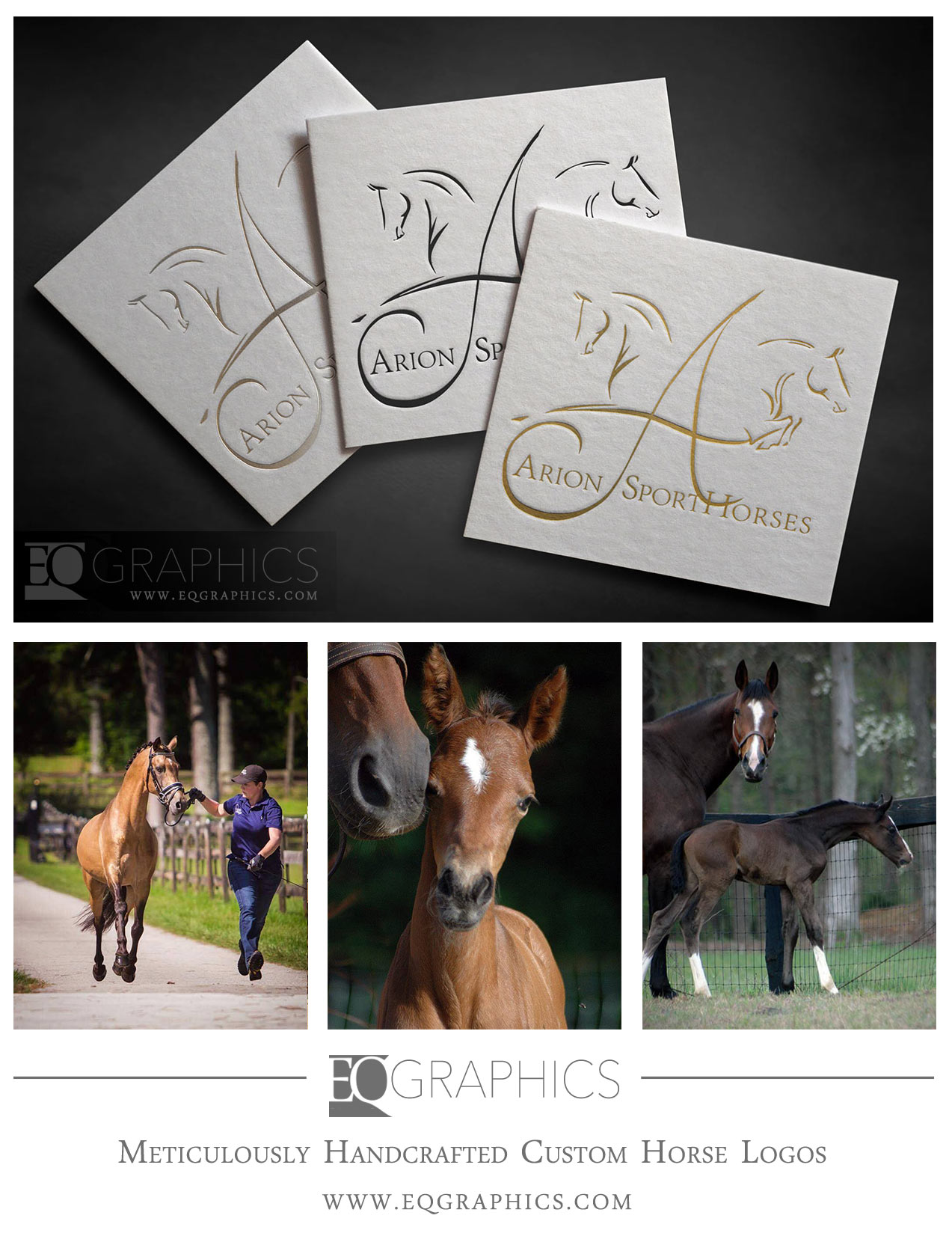 Arion Sporthorses Custom Horse Logo by EQ Graphics Equine Designer